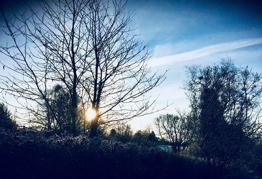 Lifelines - Winter Solsticedrawing life retreat Residential