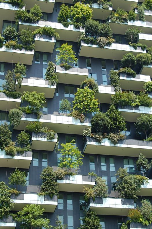 Journe des mtiers de lenvironnement  Tibits Lausanne