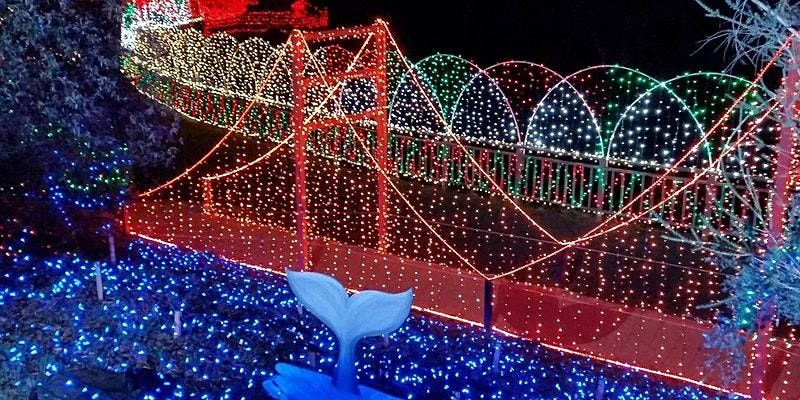 Outdoor Tent Dining at the Lights at Cambria Pines- Nov. 27th   Event in Cambria   AllEvents.in