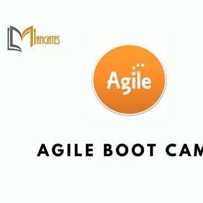 Agile 3 Days Virtual Live Boot Camp in United Kingdom