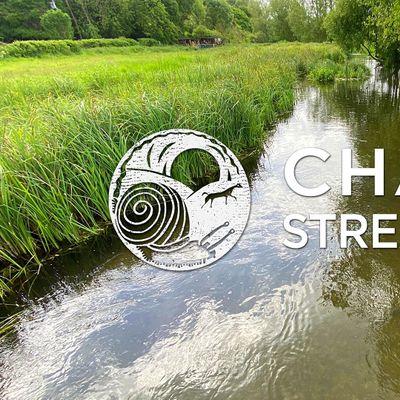 Nature Walk Chalk Streaming