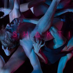 Shakti - IRCShailesh Bahoran  Dans op Donderdag