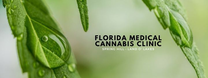 Talk About Town The History & Future of Medical Cannabis in FL