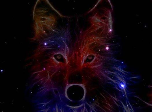 DK's Wolf Rocks Uptown Alley!, 27 March | Event in Manassas | AllEvents.in