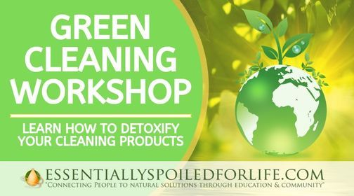 Green Cleaning Workshop, 27 March | Event in Cape Coral | AllEvents.in