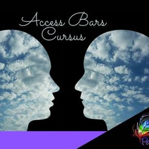 Access Bars Cursus - Zwolle