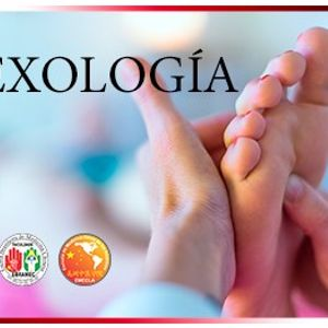 Curso de Reflexologa China