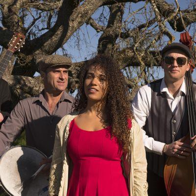 French Oak Gypsy Band New Orleans Jazz