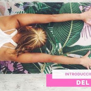 Introduccin al Mundo del Yoga