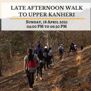 Late afternoon walk to Upper Kanheri