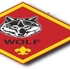 Wolf (2nd Grade) Den Meeting
