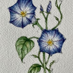FALL WORKSHOP AND WATERCOLOR 2021