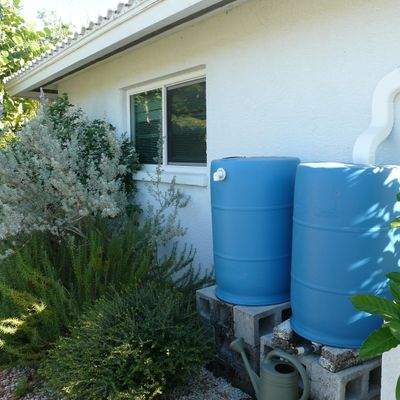 Rain Barrel Workshop (webinar)
