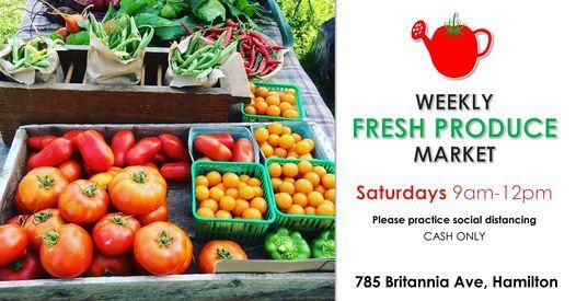 Weekly Fresh Produce Market at McQuesten Urban Farm!, 24 October | Event in Hamilton | AllEvents.in