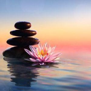 Still Mind Weekly Meditation