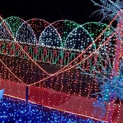 Outdoor Tent Dining at the Lights at Cambria Pines- Nov. 27th