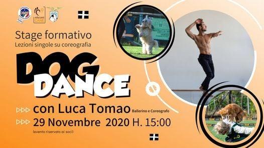 Stage formativo di Dog Dance, 29 November | Event in Rome | AllEvents.in