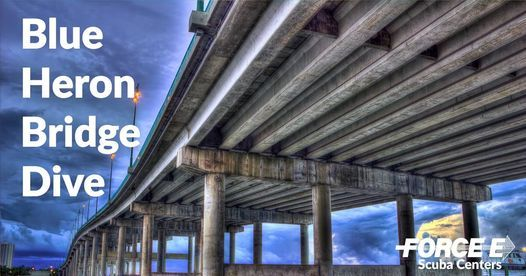 Force-E Blue Heron Bridge Night Dive: June 24, 2021   Event in West Palm Beach   AllEvents.in