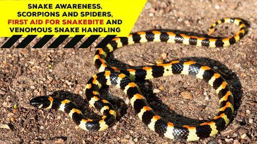 Snake Awareness First aid for Snakebite, Venomous Snake Handling, 25 September   Event in Stellenbosch   AllEvents.in