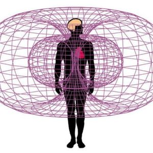 Reconnection With Heart Workshop and Osho Kundalini Meditation