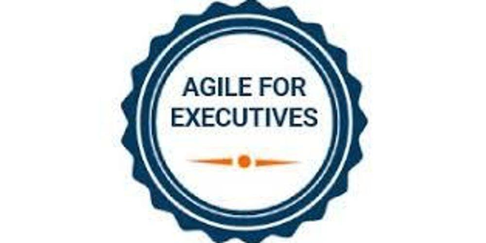 Agile For Executives Training in Washington D.C. on  Nov 15th 2019