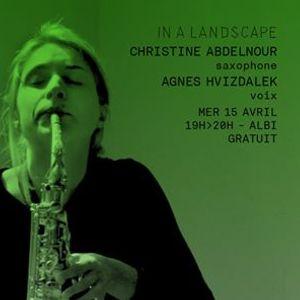 In a Landscape  Christine Abdelnour & Agnes Hvizdalek - Albi