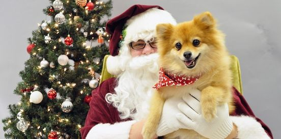 Photos with Santa, 4 December | Event in Washington D.C. | AllEvents.in