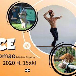 Stage formativo di Dog Dance