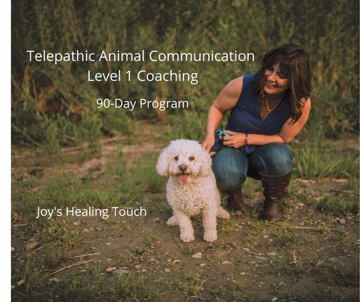 Telepathic Animal Communication Level 1 Coaching | Event in Red Deer | AllEvents.in