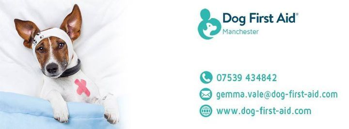 Dog First Aid Course - Practical, 30 January | Event in Manchester | AllEvents.in