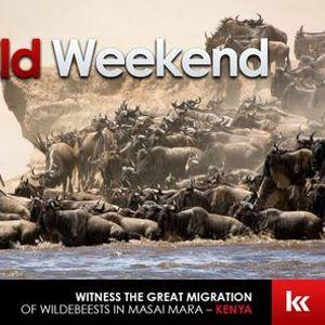 The Great Wild Weekend  Great Migration Kenya
