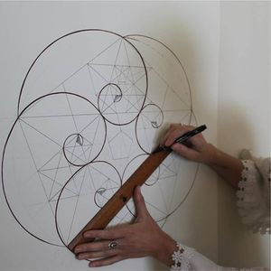 Golden Spirals in Nature  A drawing workshop