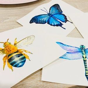 Butterflies Bees & Native Insects in Watercolour