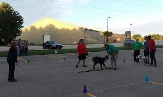 Basic Group Obedience Class, 6 weeks | Event in Galesburg | AllEvents.in
