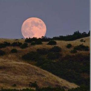Womens Full Moon Hike 2021