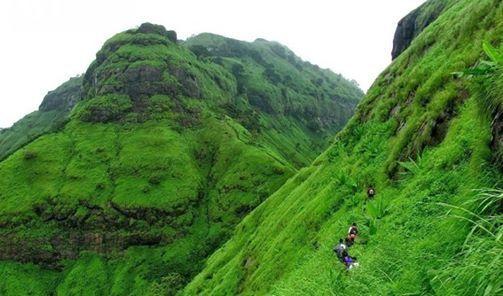 One DAyMonsoon Trek Peb Fort trek with Mumbai Mountain Hikers