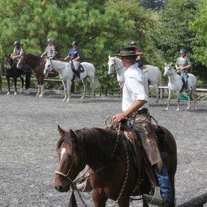Dunedin 3 Day Horsemanship Clinic