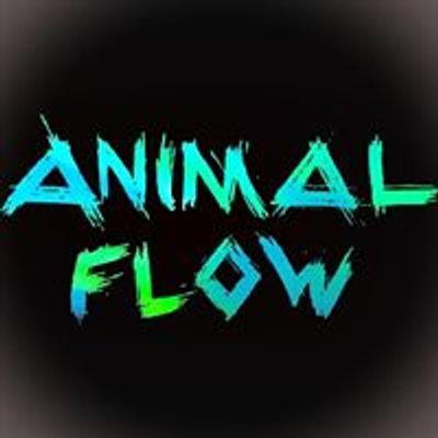 Animal Flow Wrocław