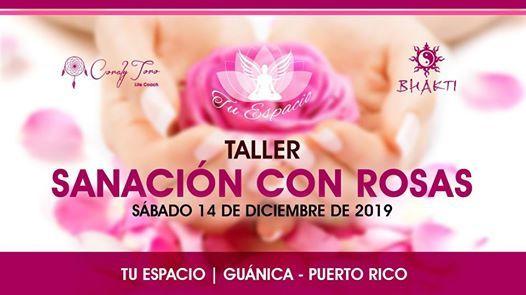 Taller Sanacin con Rosas en Puerto Rico