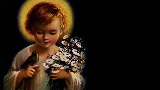 Santa Misa del Divino nio