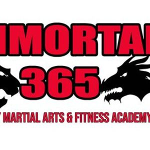 Beginners Martial Arts Program age 7 - adults (family class)
