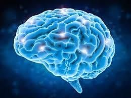 Neuro Science Technology to Improve Your Brain | Event in Paya Lebar | AllEvents.in