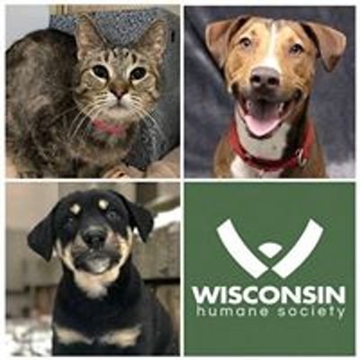 Green Bay Campus - Wisconsin Humane Society