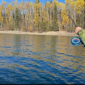 Yoga and Guided Fly Fishing