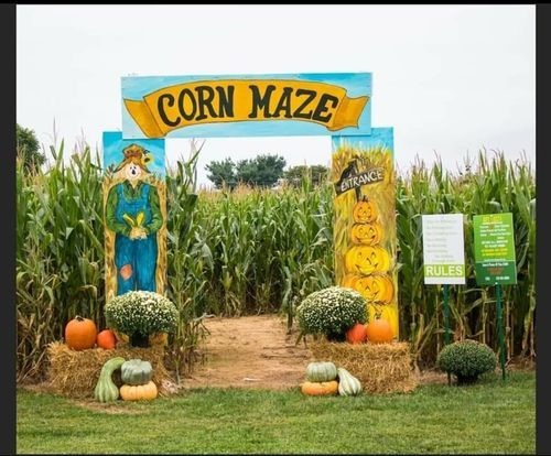 Opening Weekend at the Maze!, 11 September   Event in Winchester   AllEvents.in