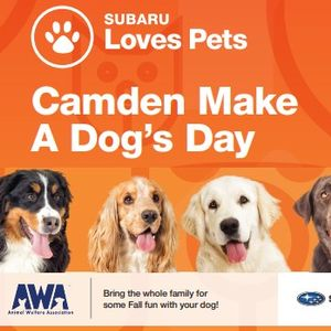 Camden Make A Dogs Day