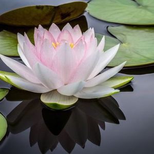 Meditatives Yin Yoga und Klang