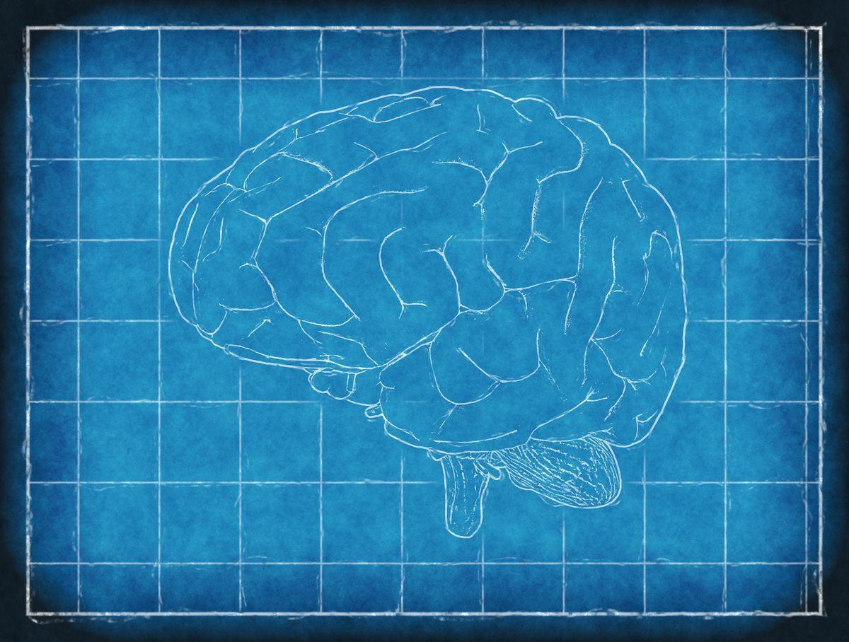 How To Improve Your Memory - Chula Vista