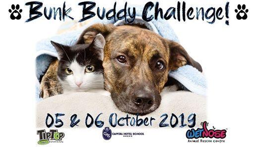 Wet Nose Bunk Buddy Challenge 2019
