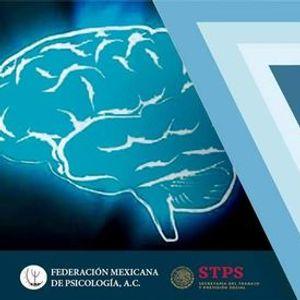 Neuropsicologa Cognitiva - Certificacin ONLINE